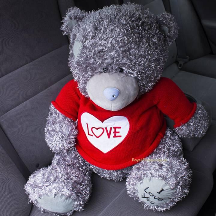 Плюшевый мишка: Teddy love