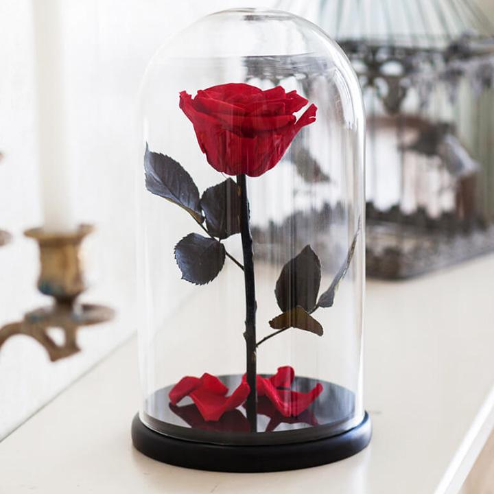 Красная роза в колбе - вечная - стабилизированная