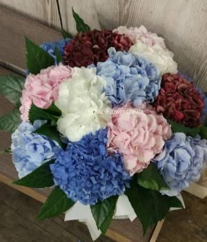 https://www.royal-flowers.dp.ua/image/cache/catalog/gortenziyu/kupit-gortenziyu-v-bukete-Royal-Flowers-300x350.jpg