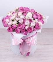 Пионовидная роза спрей в коробке №25