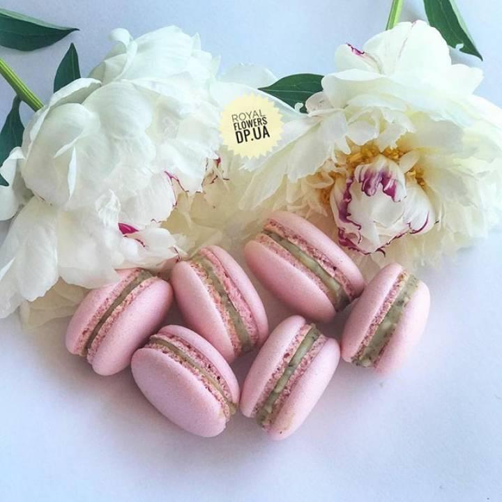 Купить набор из 6 пирожных макарун в дополнение к букету в ➔ Royal-Flowers.dp.ua