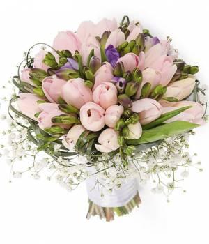 51 тюльпан и фрезия