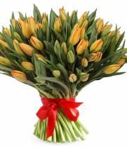 101 тюльпан, оранжевые