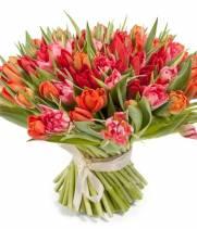 101 красно-розовый тюльпан в букете Феличита