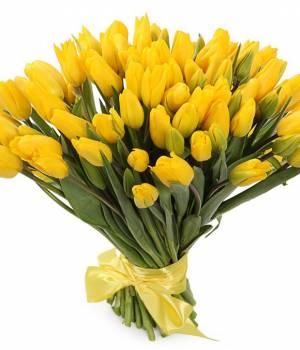 101 желтый тюльпан в букет Рассвет
