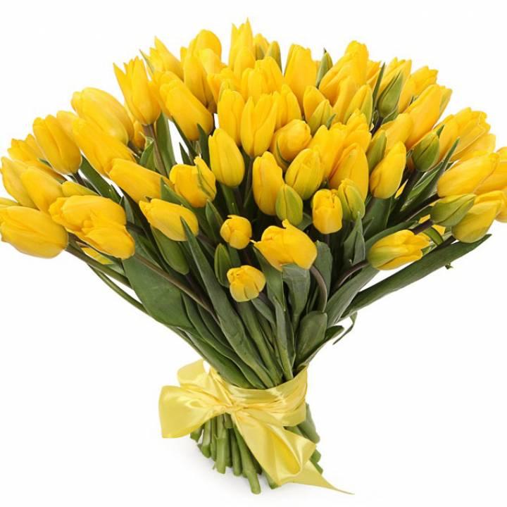 Букет 101 тюльпан желтого цвета