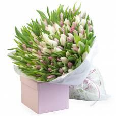 151 белый и розовый тюльпан
