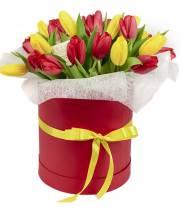 25 тюльпанов: красные и желтые в коробке