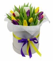 29 тюльпанов в коробке - разноцветные