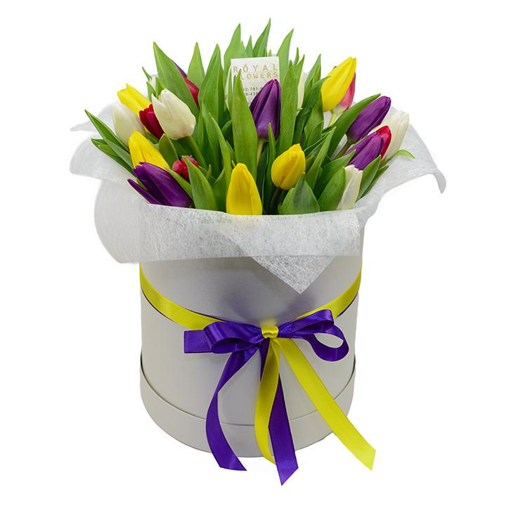 29 тюльпанов в коробке - разноцветные - Днепр