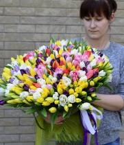 301 тюльпан - разноцветный