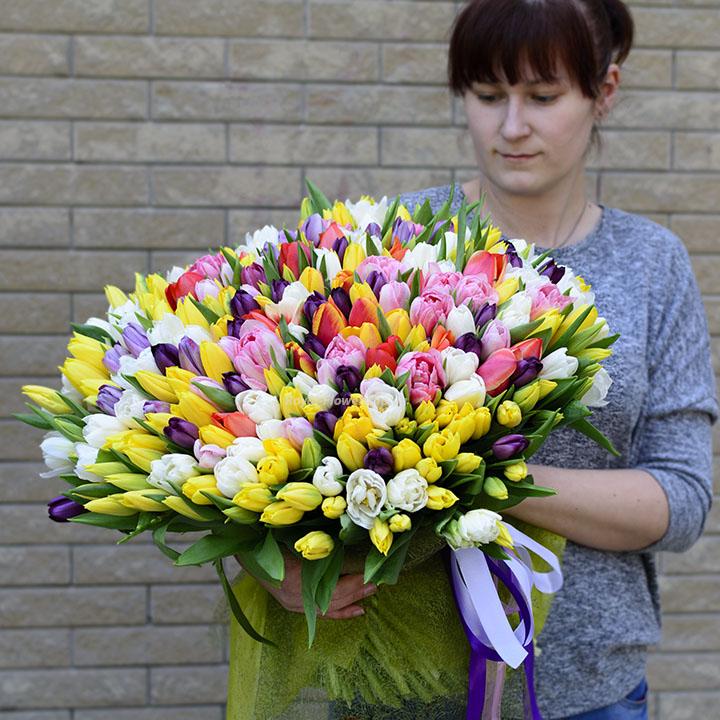 Букет 301 тюльпан - микс - Днепр