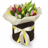 35 тюльпанов в шляпной коробке