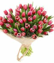 51 тюльпан в  букете Страна чудес