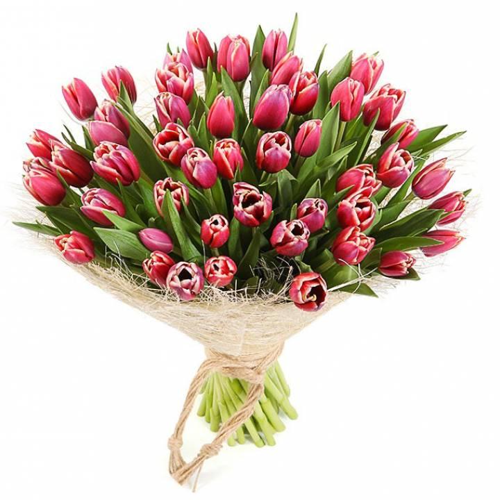 Букет 51 тюльпан страна чудес: розовый