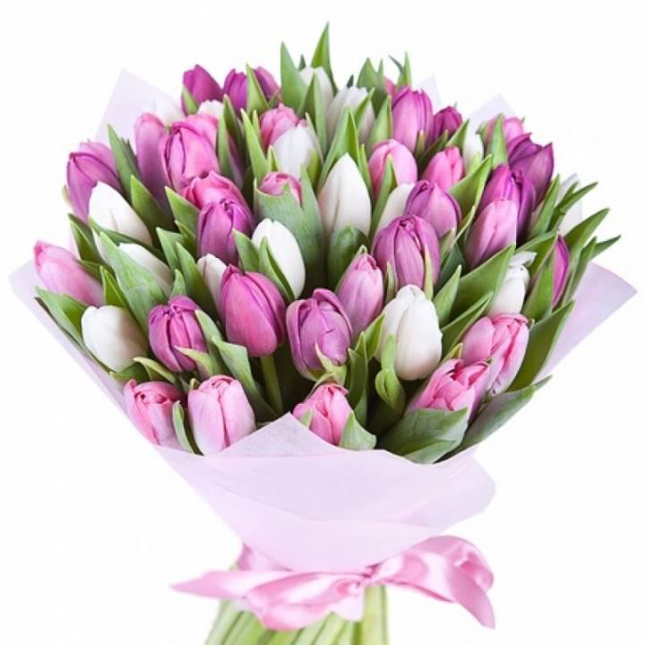 Букет Нежность - 51 тюльпан
