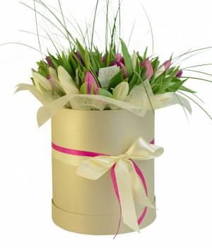 """51 тюльпан """"Белый, Розовый и Фиолетовый"""" в коробке"""