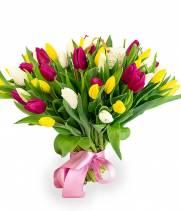 51 тюльпан - Солнечный Микс