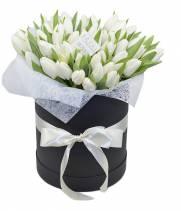 51 тюльпан в стильной коробке