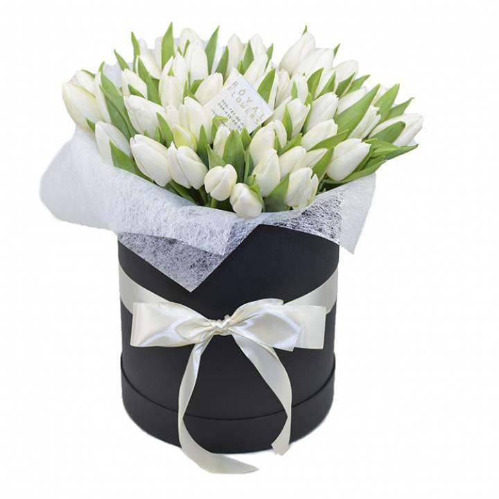 51 белый тюльпан в стильной коробке