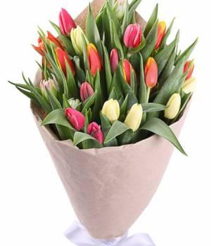 Букет 29 тюльпанов микс